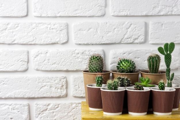 선인장과 즙이 많은 식물은 흰색 벽돌 벽 배경에 있는 작은 노란색 테이블에 있는 종이컵에 수집됩니다. 집과 마당. 복사 공간 프리미엄 사진
