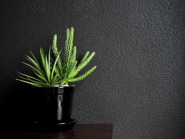 暗い上の木製のテーブルの上の黒いセラミックポットの砂利とサボテンと多肉植物
