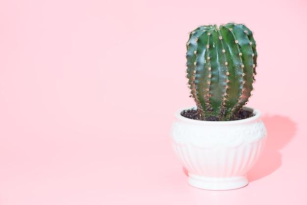 Cactus, copyspace