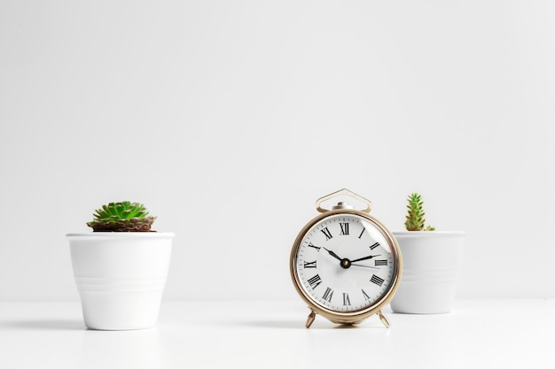 Cactus flowerpot and white alarm clock