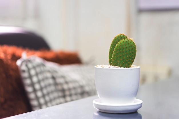 흰색 냄비에 선인장이 사무실 책상 위에 놓여 있습니다. 공기 정화 및 신선도 증가에 도움이 됩니다.