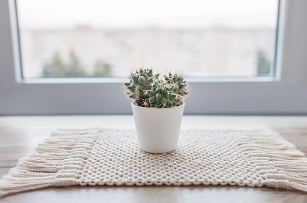 素朴な木製のテーブルに天然コットン麻ひもマットの上に鍋にサボテン。緑の植物を使ったエコスタイル。手作りのモダンなマクラメ。ニットの家の装飾のコンセプト
