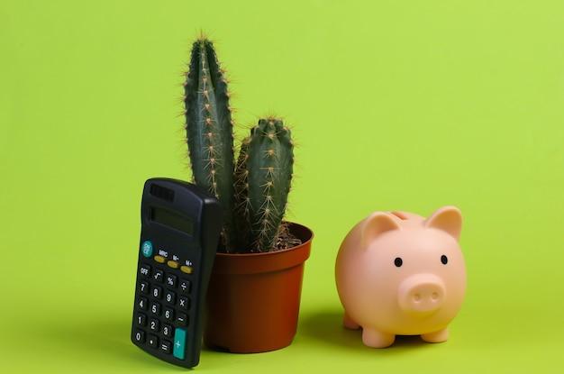 Кактус в горшке, копилка и калькулятор на зеленой студии