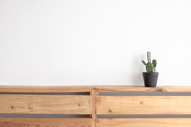 Cactus model on the wooden pallet board with isolated white wall.