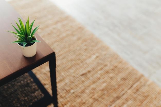 인테리어에 커피 테이블에 선인장입니다. 테라코타 카펫. 배경을 흐리게. 고품질 사진