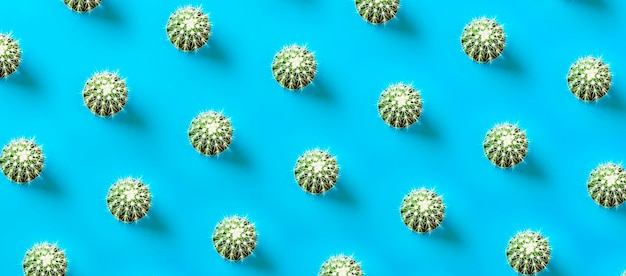 Cactus pattern on blue