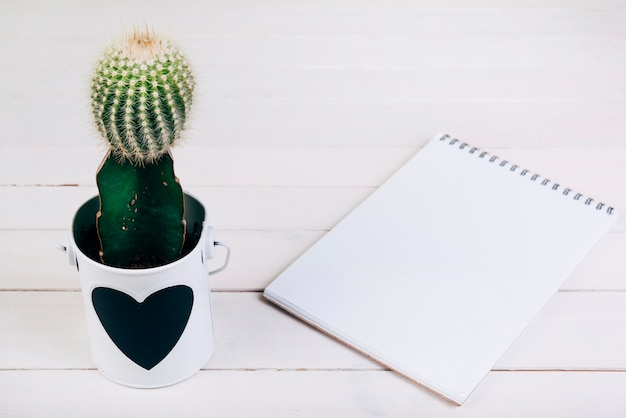 Cactus plant in cup near the blank spiral notepad on wooden desk
