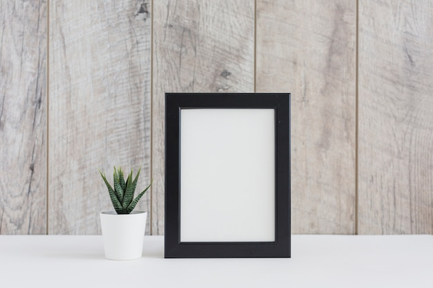 Cactus plant in white pot with the blank picture frame against wooden wall