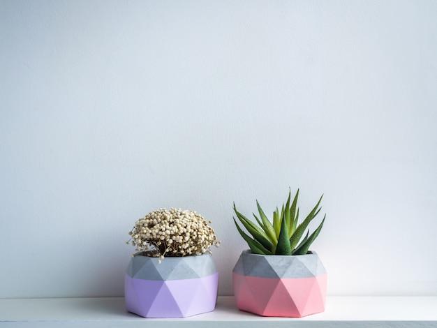 Cactus pot. concrete pot. modern geometric concrete planter.