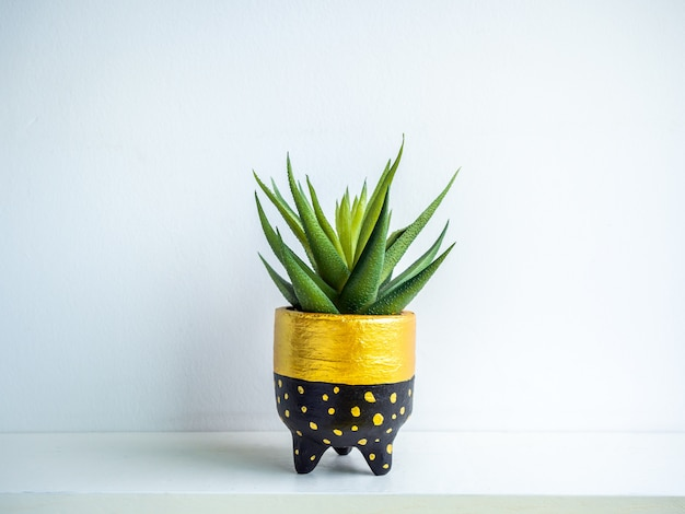 Cactus pot. concrete pot. modern geometric concrete planter.