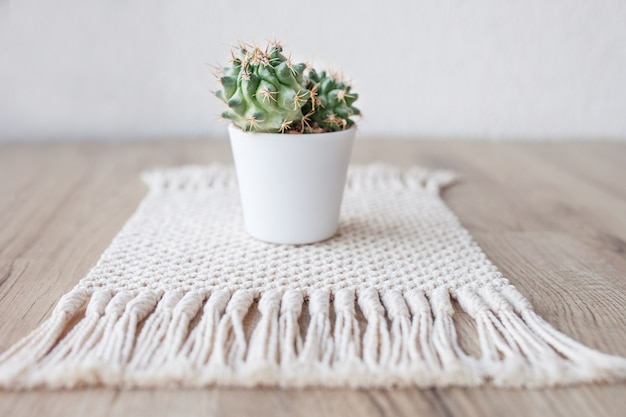 Cactus in pot on natural cotton twine mat rug on rustic wooden table. eco style with green plant. modern macrame handmade. knitted  home decoration concept