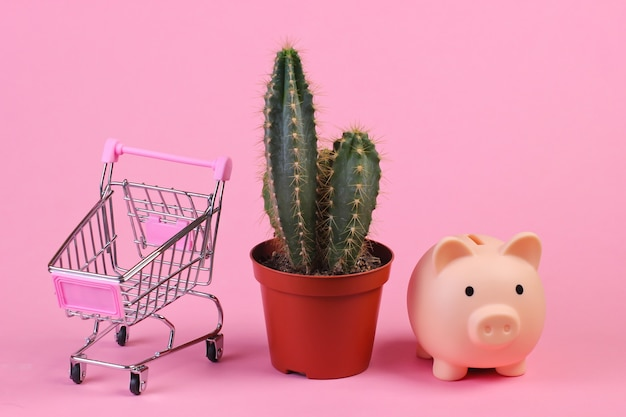 Cactus in pot, supermarket trolley and piggy bank on pink studio