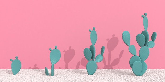 Cactus and shadow on pink wall background