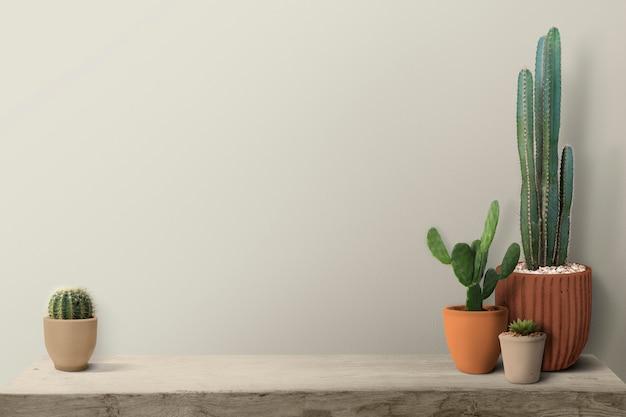Cactus su uno scaffale da uno sfondo di muro bianco