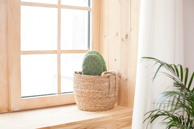 A cactus in a straw pot stands on a wooden windowsill near the window.