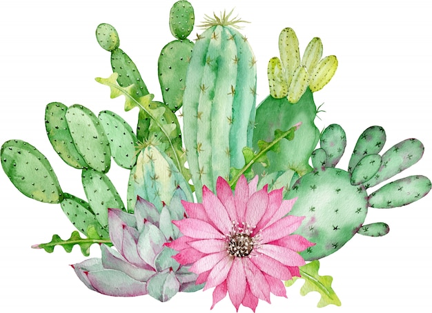 Cactus and succulent arrangement with pink flower.