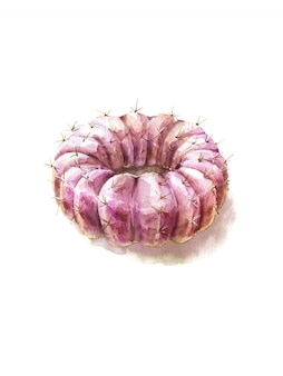 Cactus sweet yummy watercolor. donut fresh organic diet