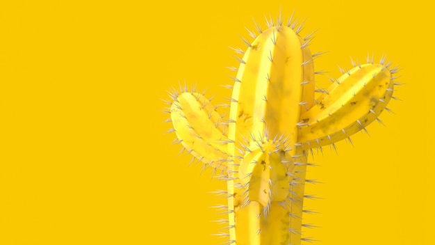 Cactus yellow color