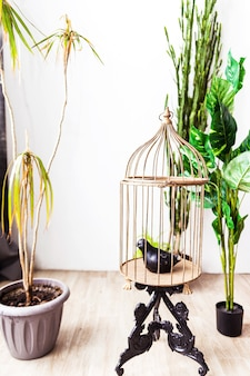 A cage with an artificial bird inside as an element of decor in interior design. vertical photo