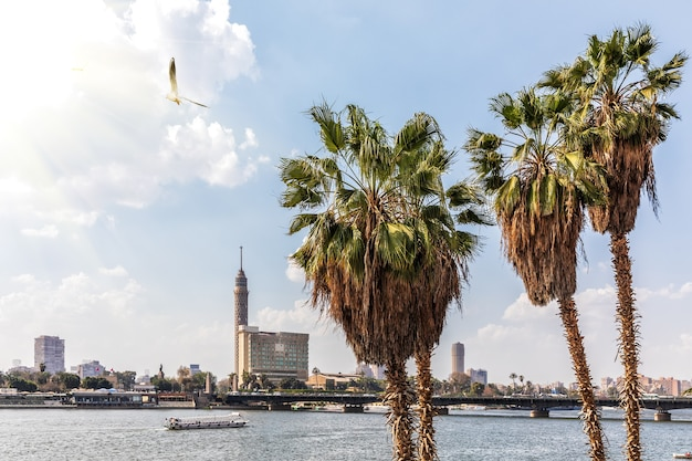 Cairo tower and the nile, city view in egypt.