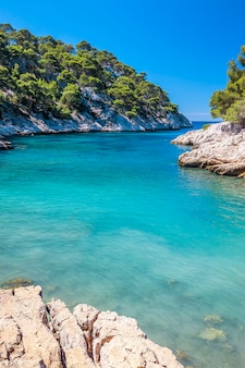 Calanques of port pin in cassis, near marseille, france