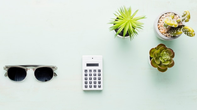 Calculator and small ornamental plants on light surface