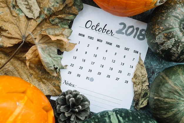 Calendar of october 2018 lying among pumpkins and leaves