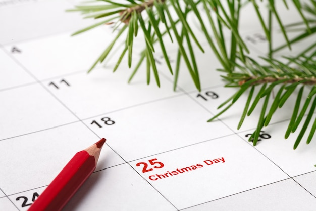 Calendar with marked date of christmas day and tree branch