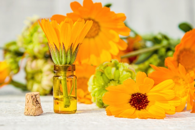 Calendula extract and flowers in a small bottle. selective focus.
