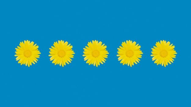 青い背景にキンセンカまたはマリーゴールドの花。テキスト用のスペース