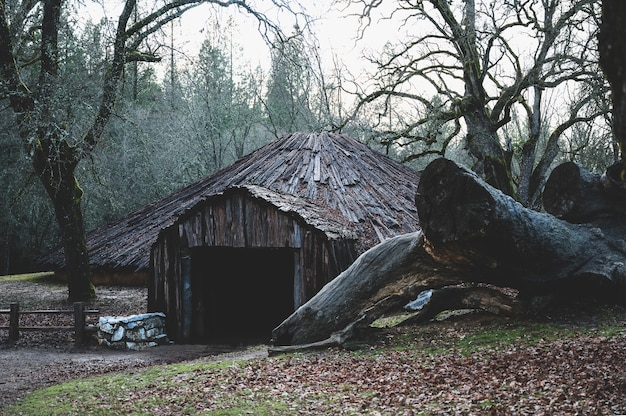 California native american ceremonial roundhouse with a big felled tree  an the side