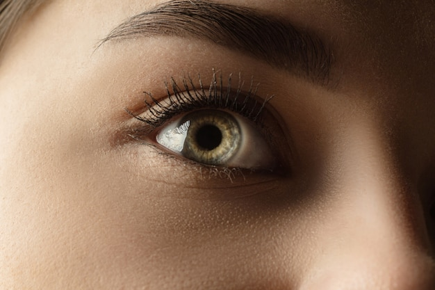 Calm. close up of face of beautiful caucasian young woman, focus on eyes.