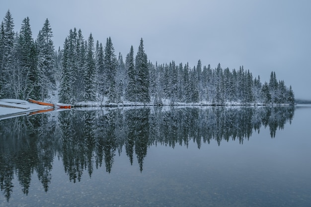 Calm lake with the reflections of the snowy trees visible, on foggy weather during winter