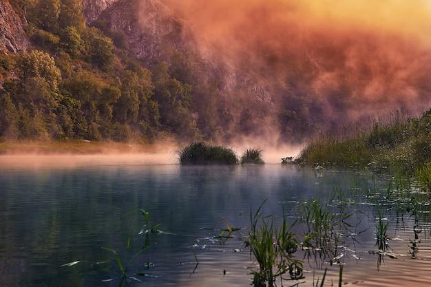 朝霧の夜明けの穏やかな川。磯のある森の川の生態系におけるエコツーリズム。