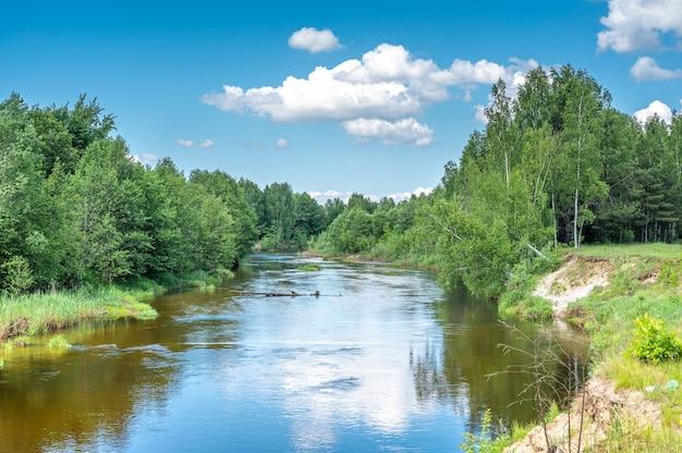 삼림 지대 풍경을 통해 부드럽게 흐르는 잔잔한 강. 여름에 강, 연못 또는 강 연안에 숲이 있는 풍경. 자연 풍경 사진
