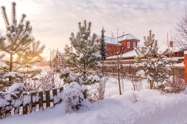日没時の穏やかな素朴な冬の風景の田園地帯。