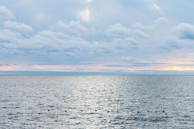 穏やかな海と青い空と白い巻雲。雲の切れ間から太陽が輝いています。鳥は海に沿って飛ぶ。落ち着き、涼しさ、リラックス感。