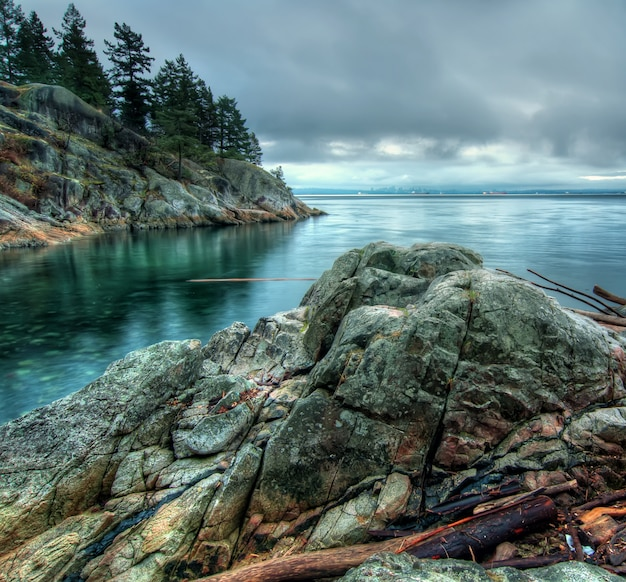 Calm sea beside rock formation with trees nature