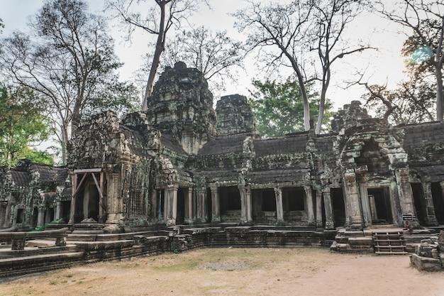 Камбоджа ангкор ват та пром храм расхитительница гробниц корни дерева руины