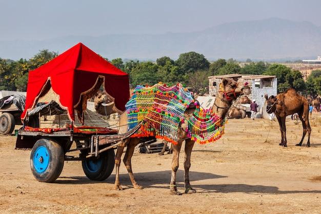 ラクダのタクシー。プシュカルメラプシュカルラクダフェア。インド、ラジャスタン州プシュカル