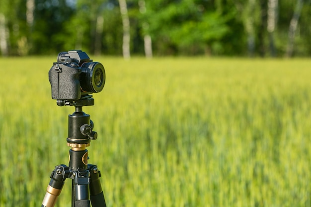A camera with a lens on a tripod, ready for taking photos or videos in nature. photographing and filming of landscapes, wildlife. high quality photo