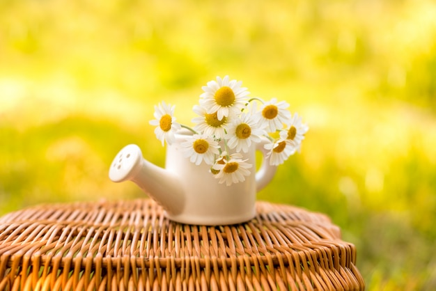 Ромашка в маленьком белом керамическом чайнике на деревянной корзине