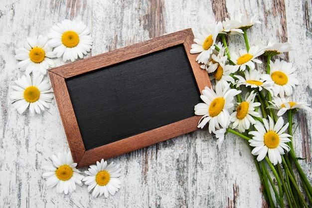 Camomile with blackboard