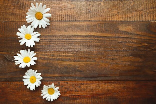 木製の背景にカモミール/デイジー。花の背景。夏/春のコンセプト。花の組成物。背景、テクスチャ。トップビュー、フラットレイアウト、テキストのコピースペース