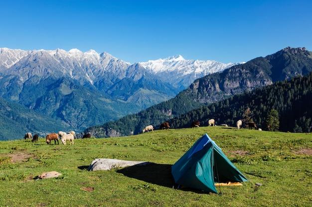 山でキャンプ。 kulluバレー、ヒマーチャルプラデーシュ州、インド
