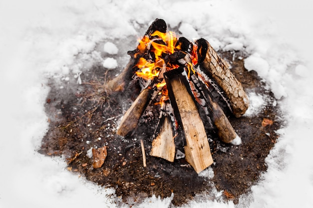 Campfire burns in the snow in the woods