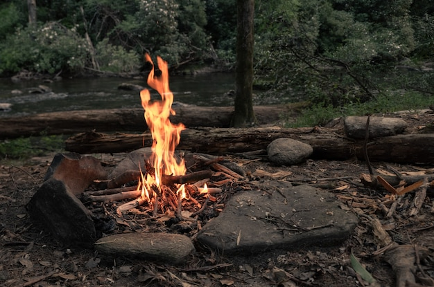 Campfire surrounded by greenery and rocks with a river in a forest