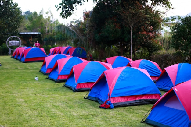 Camping area in resort
