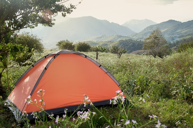 Camping in a forest. morning scene with tourist tent in green forest near of the lake. outdoor lifestyle.selective focus.