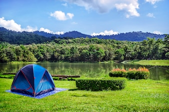 Camping in Green Grass With Blue Sky Background